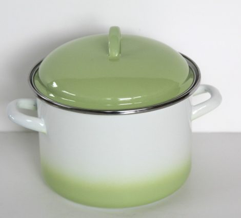Enamel Pot 18 cm  3 L Green-White